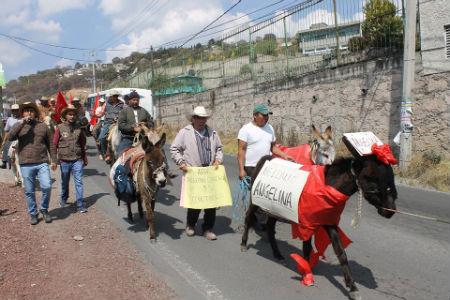 Los manifestantes protestaron contra el gobierno de la alcaldesa.