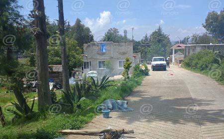 Abejas atacan y matan a un hombre en Edomex; tres más resultaron heridos