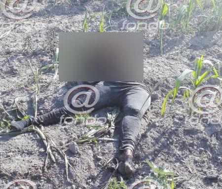 El cuerpo de la mujer había sido carcomido por la fauna.