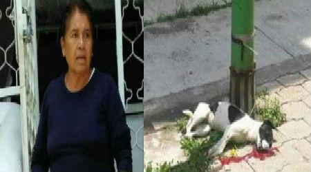 La mujer fue detenida luego de la denuncia de los vecinos.